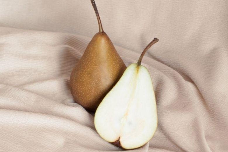 5 razones por las que las peras son tan buenas para ti